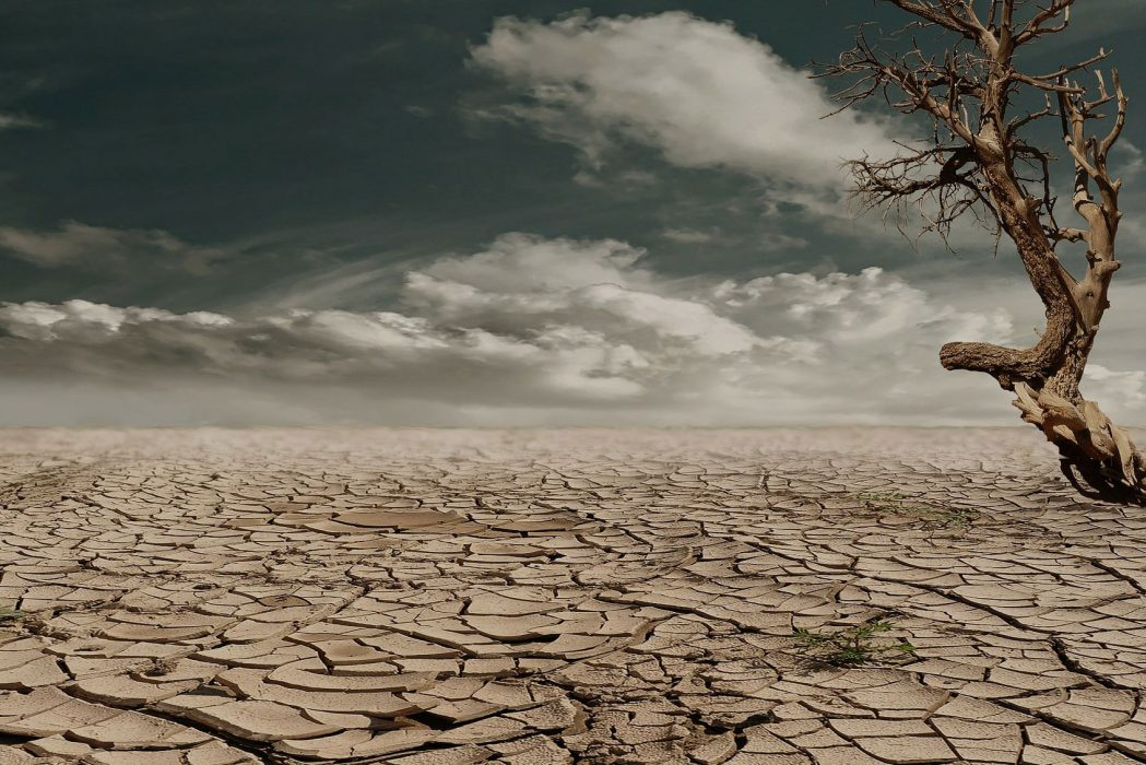 Rêver de désert