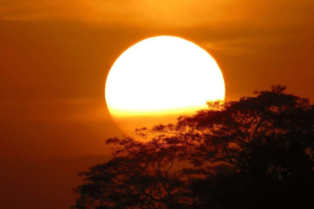 Rêver de soleil
